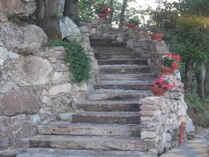 Uliveto Garden, Bed and breakfasts  Bagnara Calabra - big - 37