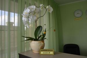 Guest House Demetra, Vendégházak  Vityazevo - big - 56