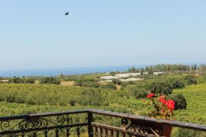 B&B Torre Di Cicala, Bed and Breakfasts  Partinico - big - 7