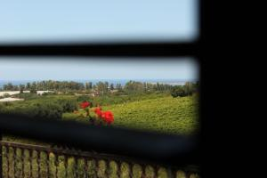 B&B Torre Di Cicala, Bed and Breakfasts  Partinico - big - 3
