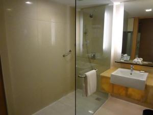 Radisson Blu Hotel Pune Kharadi, Отели  Пуна - big - 26