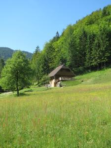 Chalet Brložnica pod Veliko planino