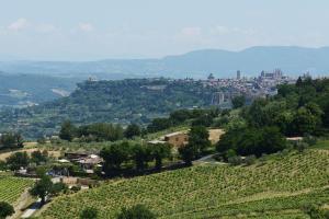Altarocca Wine Resort (5 of 114)