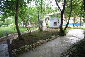 Hipsta River, Holiday parks  Gudauta - big - 20