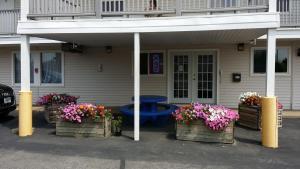 Affordable Inn, Motels  La Crosse - big - 15