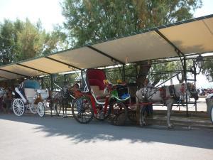 Mandalena's Aegina Greece