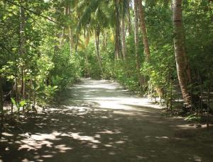 Filitheyo Island Resort (26 of 175)