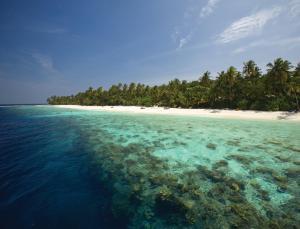 Filitheyo Island Resort (35 of 175)