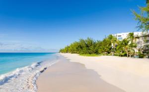 Bougainvillea Barbados (31 of 40)