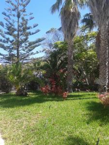 Residencial Casabela, Apartments  Los Llanos de Aridane - big - 38