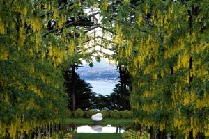 Larnach Castle (21 of 41)