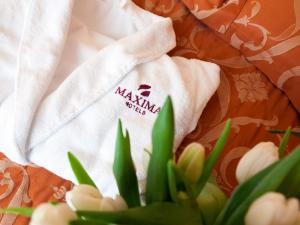 Maxima Zarya Hotel, Hotely  Moskva - big - 95
