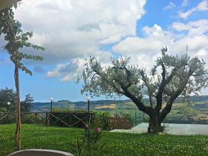 Agriturismo Monte Maggio, Farm stays  Lapedona - big - 32