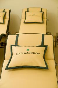 Der Waldhof, Hotely  Sankt Anton am Arlberg - big - 25