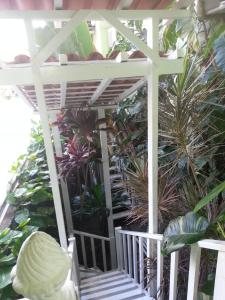Hotel Pousada Papaya Verde