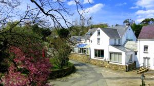 Ivybridge Guest House, Hotely  Fishguard - big - 74