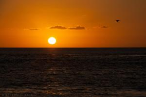 Reefsleep Hotel Review, Whitsundays, Australia | Travel