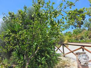 Agriturismo Monte Maggio, Farm stays  Lapedona - big - 27