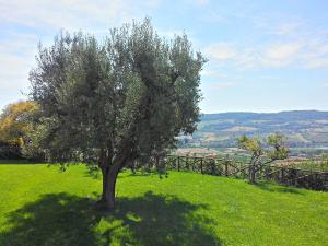 Agriturismo Monte Maggio, Farm stays  Lapedona - big - 36