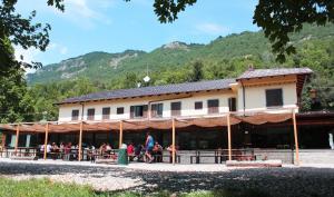 Wolf Village