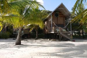 Green Parrot Beach Houses and Resort, Lodge  Maya Beach - big - 45