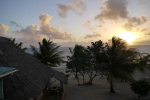 Green Parrot Beach Houses and Resort, Lodge  Maya Beach - big - 42