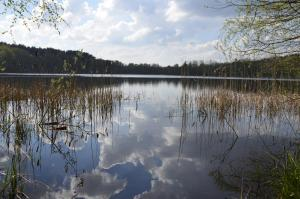 Rezydencja nad jeziorem Pestkownica
