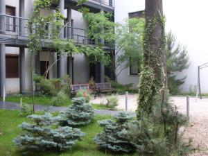 Auberges de jeunesse - Apartamente Club Bosco