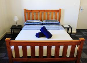 Blue Mountains Backpacker Hostel, Ostelli  Katoomba - big - 141