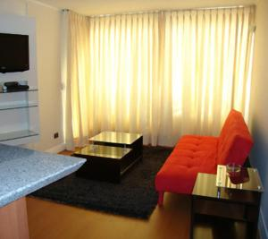 MG Apartments Providencia, Appartamenti  Santiago - big - 14