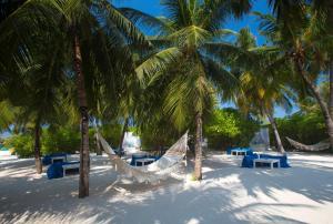 Velassaru Maldives (23 of 72)