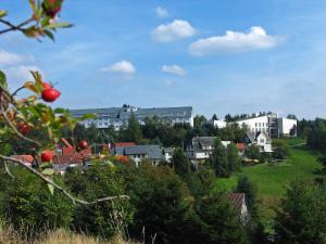 Werrapark Resort Hotel Heubacher Höhe - Einsiedel