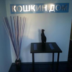 Koshkin Dom Guest House, Guest houses  Goryachiy Klyuch - big - 33