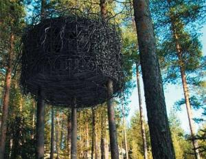 Treehotel (37 of 47)
