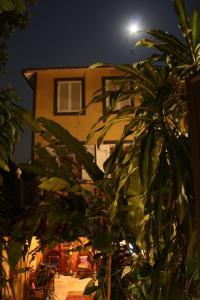 Gávea Tropical Boutique Hotel (25 of 44)