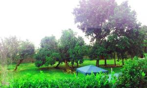 STIFFORD CLAYS FARM HOTEL, Загородные дома  Северный Стиффорд - big - 14