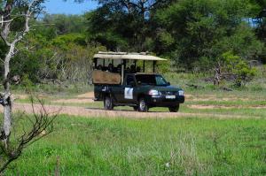 Timbavati Safari Lodge, Lodge  Mbabat - big - 17