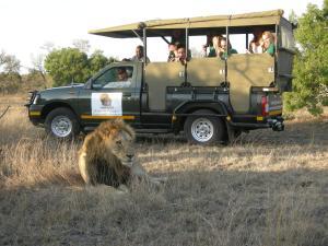 Timbavati Safari Lodge, Lodge  Mbabat - big - 8