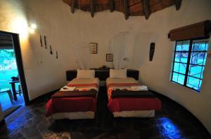Timbavati Safari Lodge, Lodge  Mbabat - big - 9