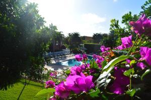 Ramada by Wyndham Naples, Hotely  Naples - big - 40