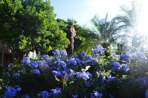Ramada by Wyndham Naples, Hotely  Naples - big - 26