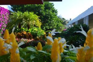 Ramada by Wyndham Naples, Hotely  Naples - big - 29