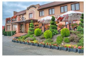 Hotel Gringo