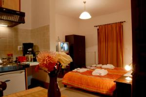 Artemis Apartments, Aparthotely  Konitsa - big - 20