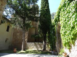 Abbazia San Pietro in Valle (34 of 200)