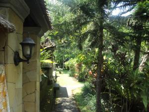 Villa Bhuana Alit, Гостевые дома  Убуд - big - 100