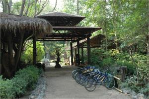 Momchailai Forest Retreat - Tha Kradan