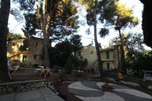 Auberges de jeunesse - Safed Inn