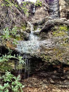 Sasa Safari Camp, Chaty v prírode  Outjo - big - 19