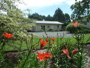 Fishtail Lodge B&B - Fly Fishing - Accommodation - Wairau Valley